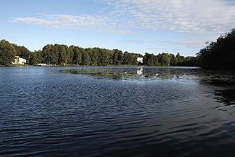 Klostersee Lehnin in Brandenburg